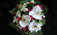 orkide çiçekleri fiyatları ne kadardır?